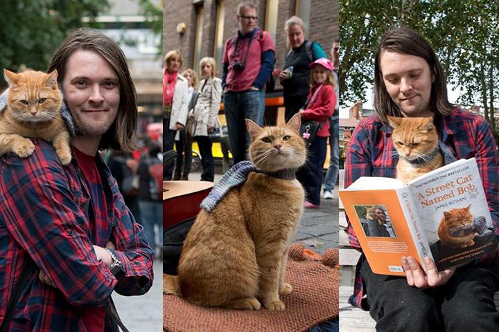 James Bowen e il gattoBob